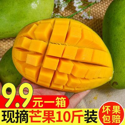 广西桂七芒果3/5/9斤生鲜水果整箱芒果非贵妃台农芒果青芒甜心芒