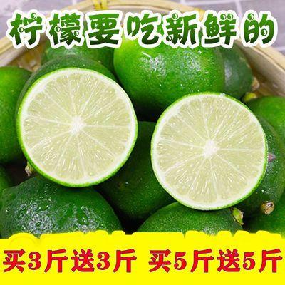 【鲜果!还在树上】青柠檬新鲜柠檬青皮小青柠新鲜水果果园现摘