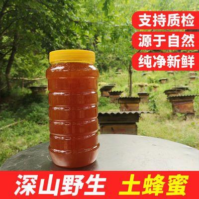77725/蜂蜜天然正宗土蜂蜜农家野生自产自销野花蜂蜜正宗百花蜜木桶蜂蜜