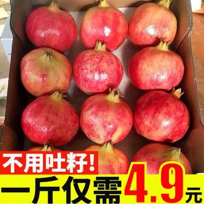 【5斤20】现摘会理突尼斯软籽石榴非甜石榴软籽石榴当季新鲜水果/