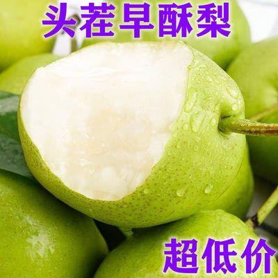 陕西早酥梨现摘脆甜皮薄超甜水果皇冠雪梨子批发10/5/3斤