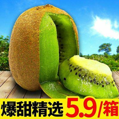 现摘现发湘西绿心猕猴桃奇异果新鲜孕妇水果3/5/9斤非黄心红心