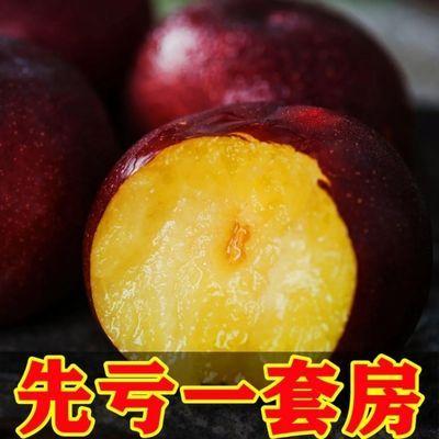 云南红布林李子10斤水果新鲜应季当季整箱孕妇大黄肉酸甜脆李子