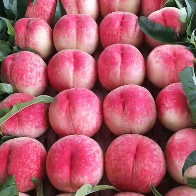 陕西富平正宗新鲜现摘水蜜桃整箱水果脆甜软桃大果孕妇毛桃好吃