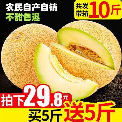 【现摘现发】哈密瓜新鲜孕妇水果包邮5斤10斤整箱网纹瓜香甜蜜瓜
