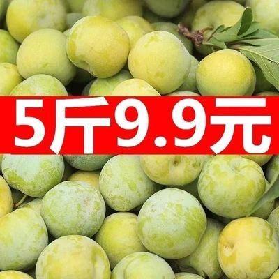 【现货速发】脆甜陕西秋姬李子1/3/5斤应季新鲜水果三华李批发