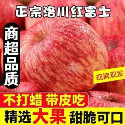 【假一赔十】正宗特级洛川红富士苹果3/10斤当季新鲜苹果应季批发