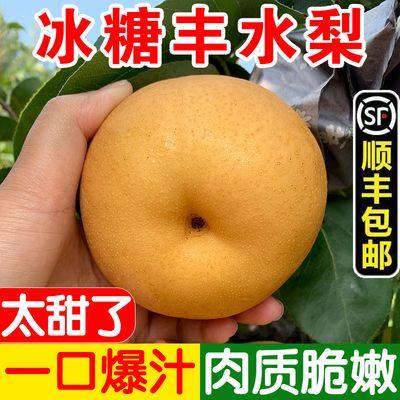 【顺丰包邮】丰水梨现摘新鲜梨子单果260g香梨批发5/3斤秋月梨子