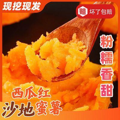 【现挖现发】沙地西瓜红红薯新鲜红蜜薯番薯地瓜蔬菜2/5/9斤批发