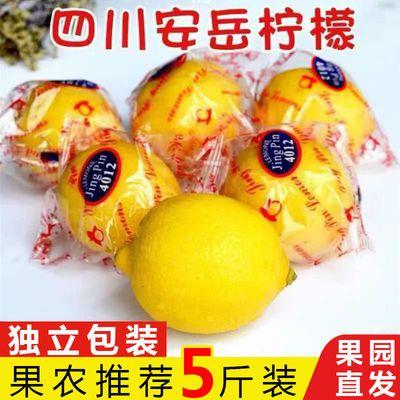 四川安岳柠檬新鲜水果柠檬精选特级果孕妇应季水果切片榨汁泡茶