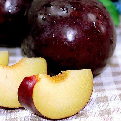 陕西黑布林 酸甜黑布李 李子3斤单果55mm起当季新鲜水果