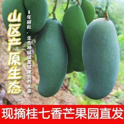 广西百色田东桂七芒芒果热带水果新鲜当季3/10斤整箱现摘应季香芒