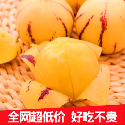 [超甜圆果] 云南石林人生果黄果10/5/2斤新鲜应季黄肉低糖水果