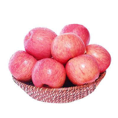 現摘洛川蘋果紅富士脆甜蘋果應季新鮮冰糖心脆蘋果水果整箱批發