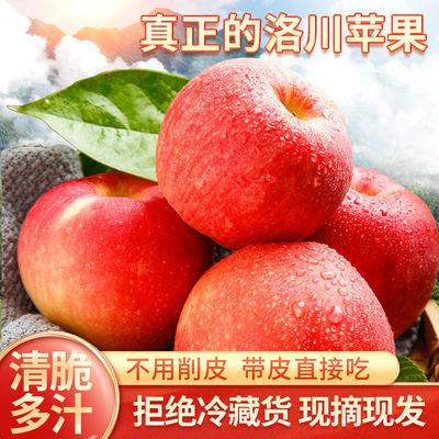 洛川苹果水果新鲜水果当季整箱陕西洛川正宗红富士一级脆甜包邮