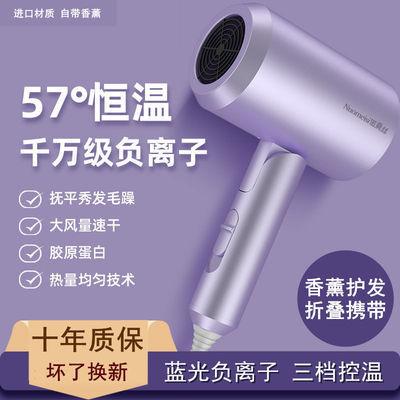 55599/吹风机家用静音大风力吹头发宿舍专用大小功率电吹风筒负离子护发