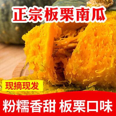 板栗南瓜農家小南瓜新鮮蔬菜迷你南瓜寶寶輔食批發 -