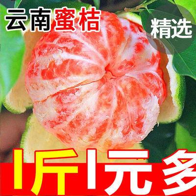 无核蜜桔橘子新鲜水果批发桔子水果酸甜青桔当季蜜橘孕妇水果【7月31日发完】