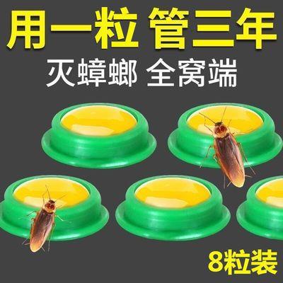 63029/蟑螂药强效家用无毒一窝端一扫光方便贴厨房卧室蟑螂克星灭虫神器