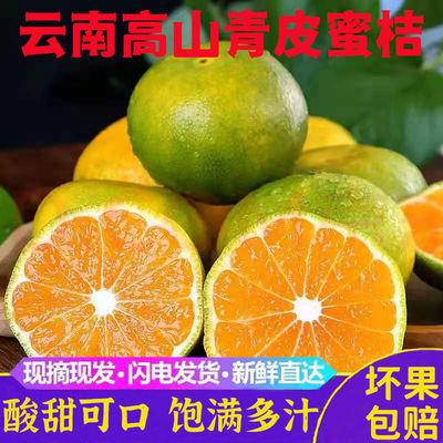 【现货】云南早熟青皮蜜桔酸甜无籽橘子新鲜水果应季水果整箱包邮