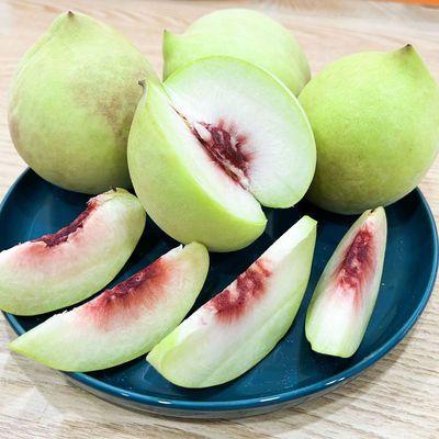 爆甜鹰嘴桃重庆新鲜水果脆桃子整箱装水蜜桃当季脆甜孕妇香桃批发