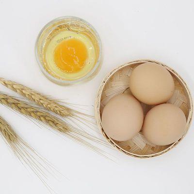 57663/正宗江西农家土鸡蛋农家散养柴鸡蛋笨鸡蛋草鸡蛋新鲜鸡蛋批发