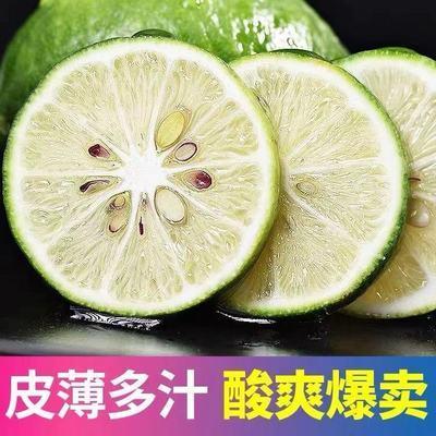 柠檬新鲜有籽包邮批发小果奶茶店独立包装薄皮当季新鲜应季水果