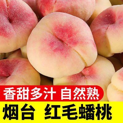 新鲜山东红毛蟠桃毛桃3/5斤装单果150g起当季新鲜水果现摘现发