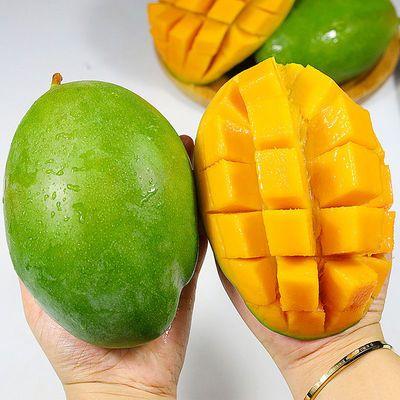 四川攀枝花凯特芒果3斤新鲜特大青芒果当季现摘水果批发整箱包邮