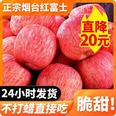山东烟台栖霞红富士水果脆甜新鲜5/10斤整箱批发水果新鲜应季水果