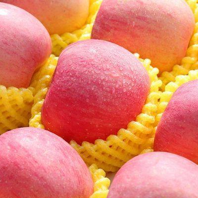 甜嘴猴山东烟台红富士苹果新鲜水果3-10斤应当季整箱冰糖心脆甜