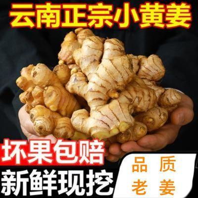 75858/生姜精选云南小黄姜老姜新鲜现挖生姜新姜月子姜老姜新鲜蔬菜嫩姜