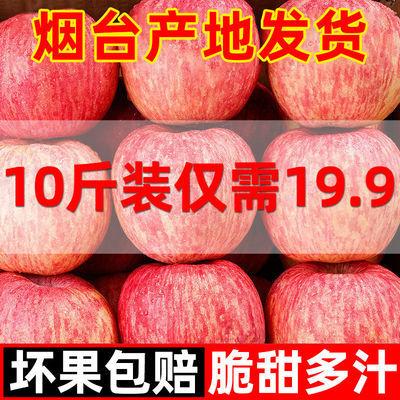 【正宗产地发货】山东烟台栖霞红富士苹果水果新鲜当季水果丑整箱