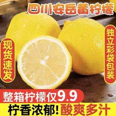 57741/四川安岳黄柠檬新鲜柠檬果子新鲜水果薄皮柠檬泡水多规格批发专用