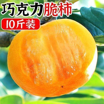 57768/云南热卖正宗云南甜柿脆柿子10斤装整箱果园直发新鲜水果包邮生吃