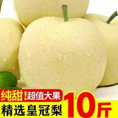 河北正宗皇冠梨10斤应季水果梨子新鲜薄皮脆甜批发5斤3斤雪梨香梨