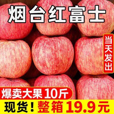 山东烟台栖霞红富士苹果水果新鲜当季水果丑苹果整箱包邮3/5/10斤