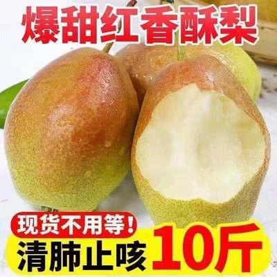 爆甜红香酥梨脆甜青皮薄酥梨现摘现发香梨新鲜水果梨子整箱批发