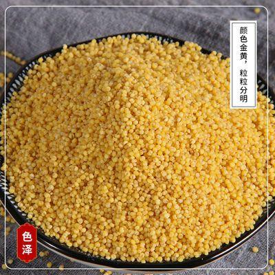 小黄米5斤2斤小米粥黄小米正宗陕北米脂油小米批发真空包装月子米