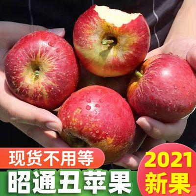 新鲜水果苹果云南昭通野生丑苹果10斤冰糖心当季嗄拉孕妇整箱批发