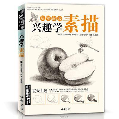 兴趣学素描零基础入门书籍绘画铅笔教程临摹教程材经典全集杨建飞