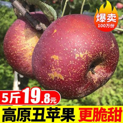 【脆甜多汁】大凉山新鲜盐源丑苹果红富士水果3/5/8斤非昭通苹果
