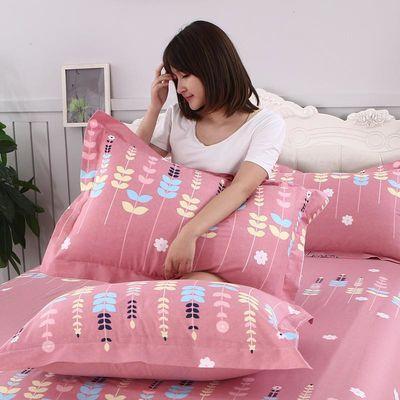 100%全棉纯棉枕套一对装情侣公主风成人枕芯内胆套加厚双人枕头罩