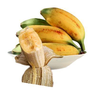 广东现摘芭蕉大蕉高蕉8/6/5斤新鲜水果plantain无催熟非香蕉米蕉
