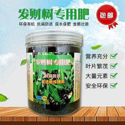 速效复合肥发财树花肥料专用肥室内盆栽通用化肥平安树幸福树