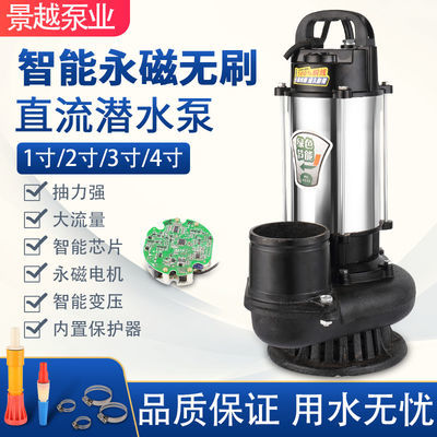 农用48v60v伏直流无刷家用潜水泵大功率高扬程大流量电动车抽水机