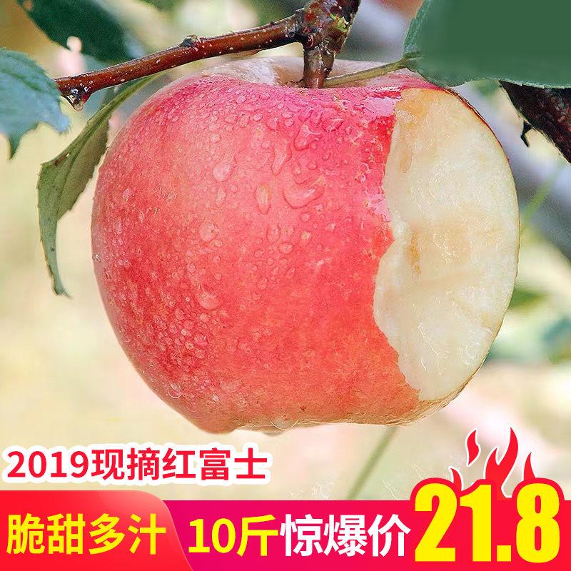 现摘现发,不打农药带皮吃:带箱10斤 蔚然非凡 河南红富士苹果 丑苹果