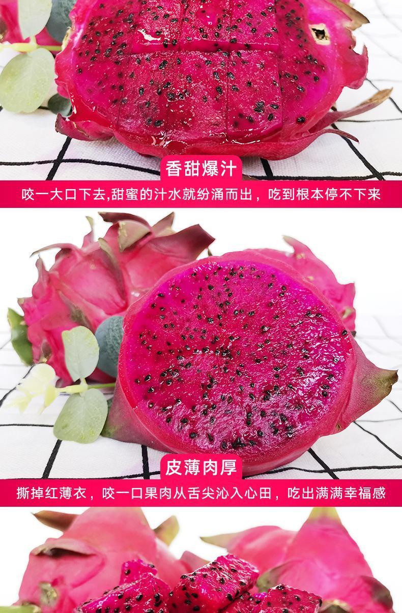 海南红心火龙果新鲜水果包邮现摘迷你中大果整箱批发5斤白心