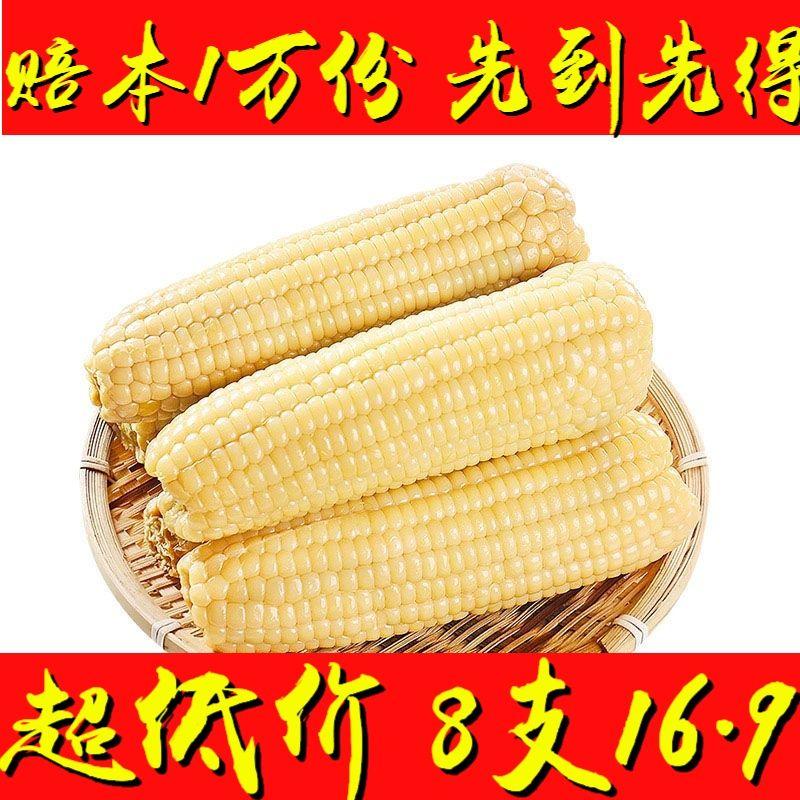 超低价【8支16.9】白粘糯熟玉米 冻苞米 加热即食 黑龙江玉米棒【2月28日发完】
