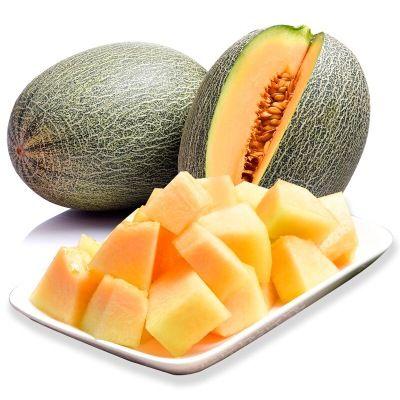 正宗新疆哈密瓜2-10斤装西州蜜瓜甜瓜蜜瓜网纹瓜新鲜水果批发包邮
